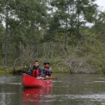 Kushiro Marsh and River - Canoeing in the untouched wilderness