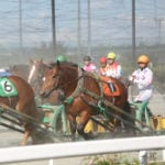 """Banei Horse Race"" a horse competition carrying on the spirit of the pioneer era"