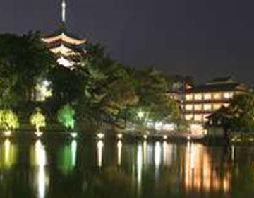 奈良公園に隣接するお宿  「さるさわ池よしだや」