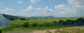 コシヒカリを開発した「福井県農業試験場」