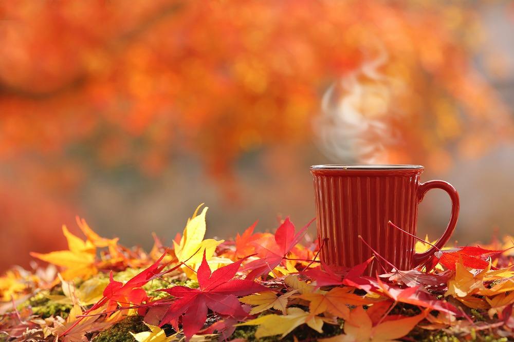 自分へのご褒美にも。とことん季節を楽しめる「秋スイーツ」特集